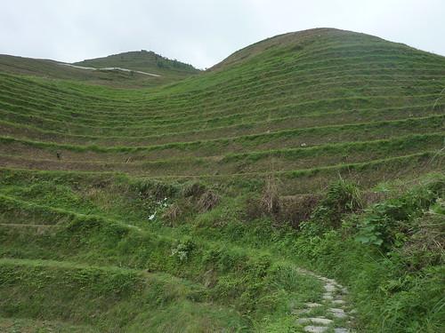 C-Guangxi-Dazhai-montee (8)