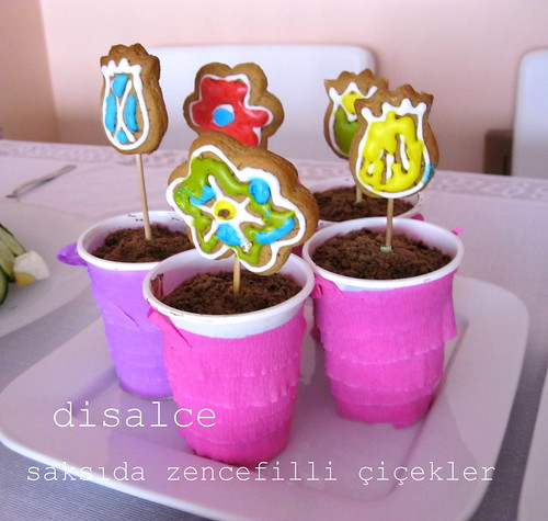 saksıda yenilebilir zencefilli çiçekler