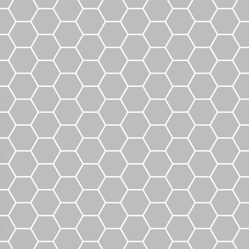 20-cool_grey_light_NEUTRAL_hexagon_large_solid_12_and_a_half_inch_SQ_350dpi_melstampz