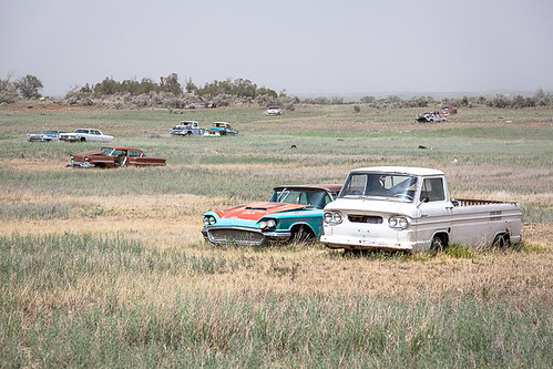 old usa classic cars abandoned field car vintage landscape junk colorado unitedstates random many harvest crop multiple junkyard dolores thunderbird tbird clunkers junkers dispersed