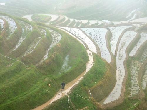 C-Guangxi-Pingan-Terrasse des 7 etoiles (39)
