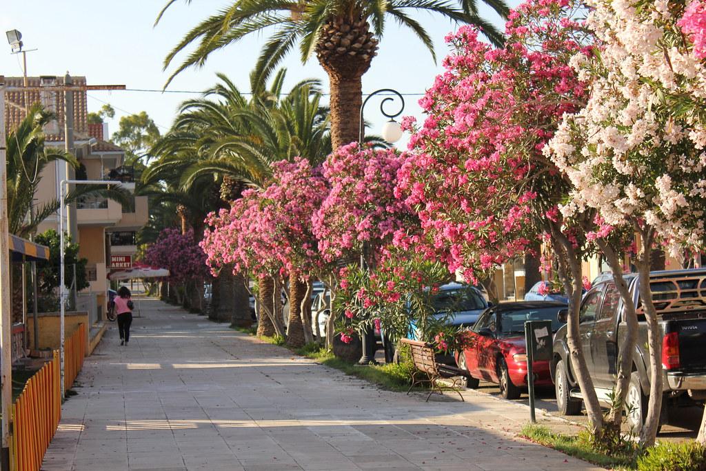 Argostoli, Kephalonia, Greece