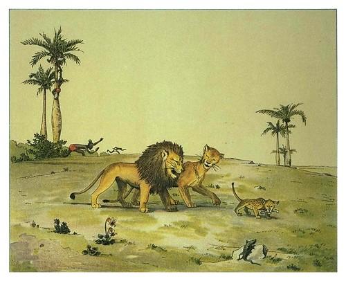 010-Paseo dominical-Afrika  Studien und Einfaelle eines Malers 1895- Hans Richard von Volkmann- Universitätsbibliotheken Oldenburg