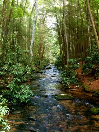 blue mushroom creek waterfall branch hiking falls ridge trail stanley appalachian mackaye benton