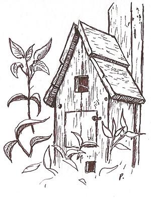 dawn's birdhouse