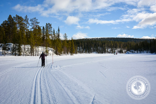 Cross Country Skiing Yllas