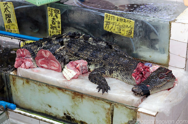 Crocodile meat for sale | Flickr - Photo Sharing!