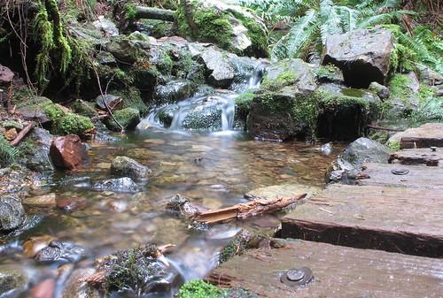 Mini waterfall & bridge