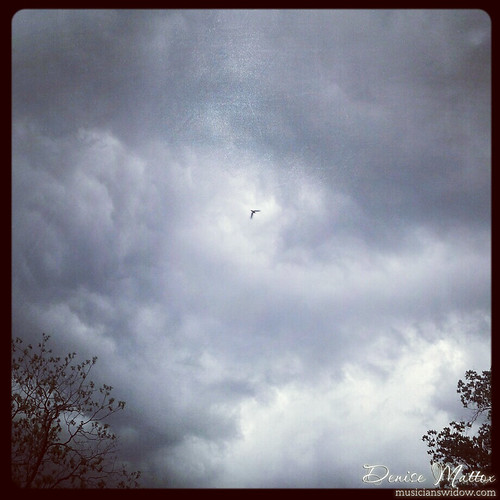 146: Stormy Instagram