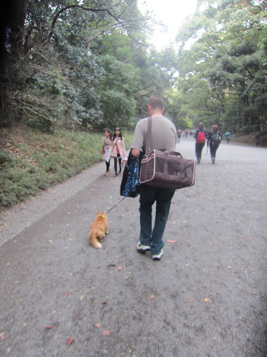 Walking with her leash!