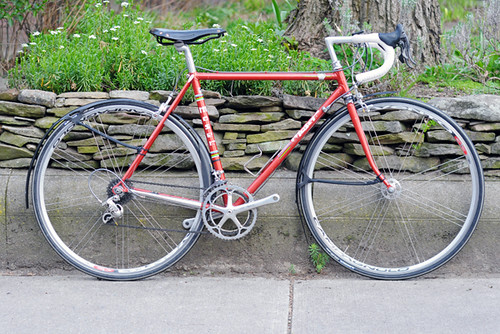 Moser with Crud Fenders