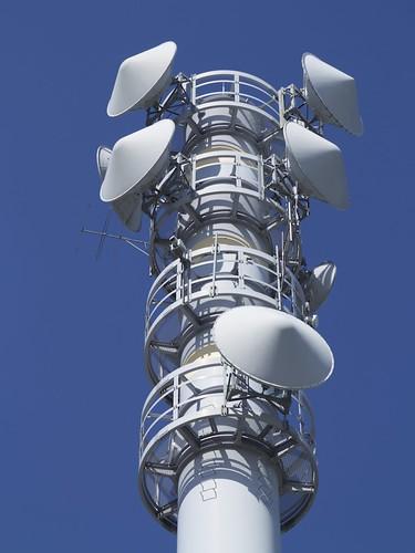 アンテナ Antennae