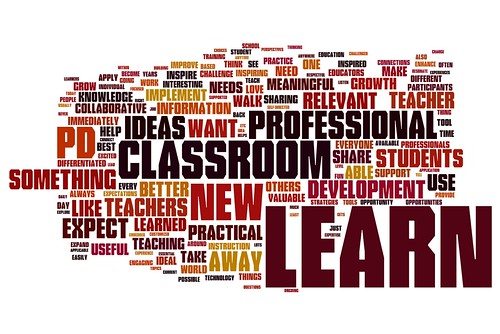 What expectations do you have for professional development? (Edcamp Philly 2012 Survey)