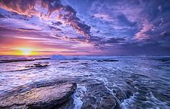 [フリー画像素材] 自然風景, 海, ビーチ・海岸, 朝焼け・夕焼け, 風景 - オーストラリア ID:201205162000