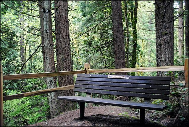 Park Bench - Hoyt Arboretum - Portland, Oregon