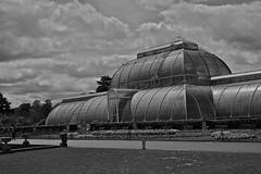 Vistas of Kew Gardens in Black and White