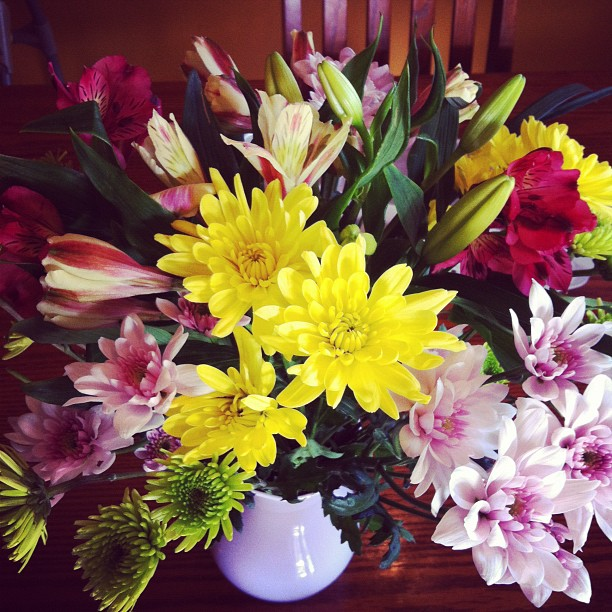 Blooms to brighten our day!!
