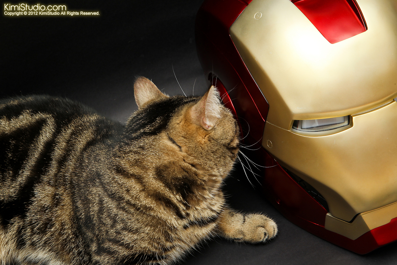 2012.05.10 Iron Man Helmet-007