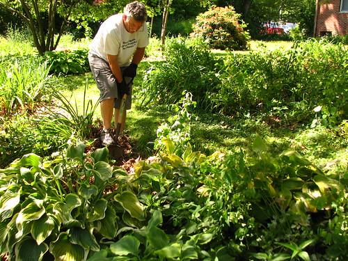 my gardener...