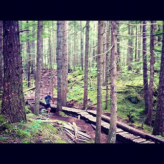 Catching my run partner sidestepping some woodwork during a 40k #Squamish50 run day
