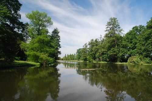Wörlitzer See an der Roseninsel