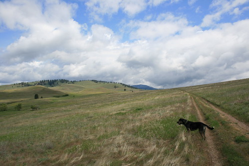 north_hills_20120528_019