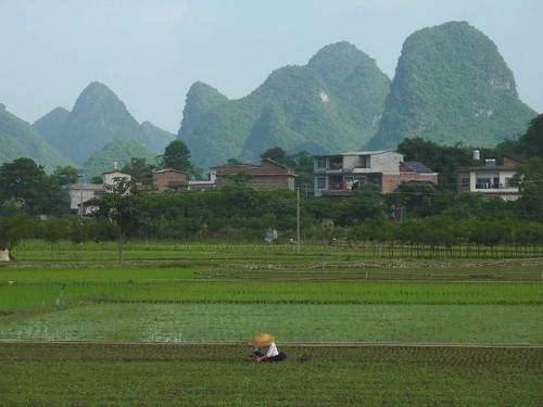 C-Guangxi-Yangshuo-Tour-Yulong (5)