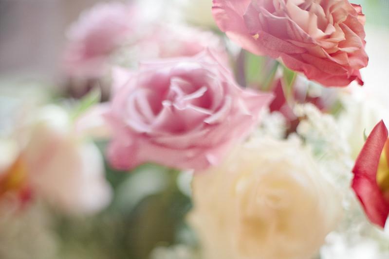 roses4s