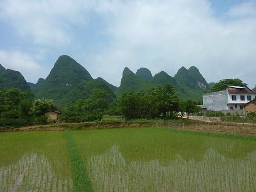 C-Guangxi-Yangshuo-Tour-Yulong (61)