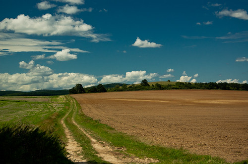 road summer sky cloud field landscape hungary outdoor land plain pathways