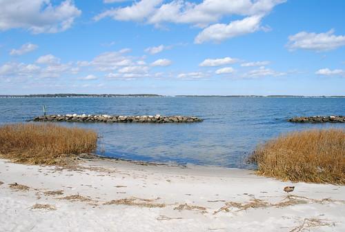 statepark park beach grass clouds bay sand marsh delaware delawarestatepark holtslandingstatepark holtslanding sussexcountyde inlandbay millvillede