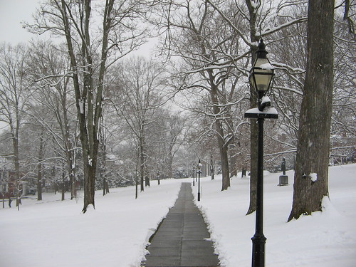 winter snow landscape lexingtonvirginia washingtonandleeuniversity