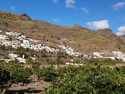 Finca Las Longueras, Agaete, Gran Canaria