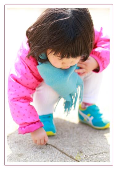 七五三記念 家族写真 ロケーション撮影 出張撮影 愛知県大府市 公園 屋外 子供写真