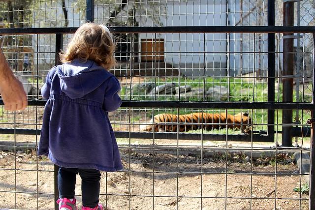 Austin Zoo - Spring 2014