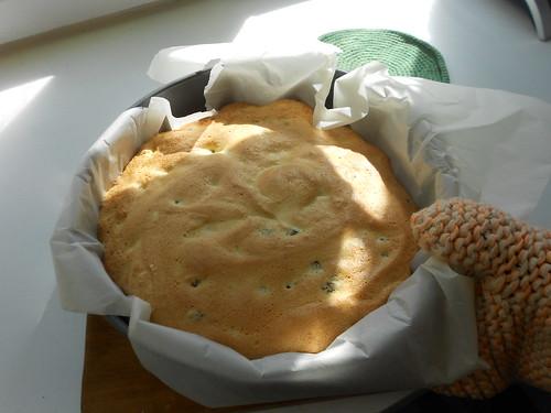 готовый бисквит в форме из духовки