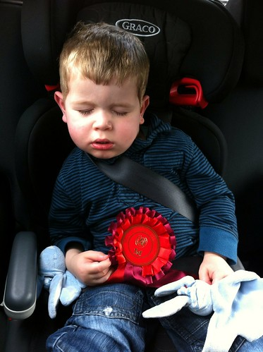 Mack gave Owen a rosette, and tired him out!