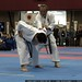 bunkai   demonstrations    MG 0448