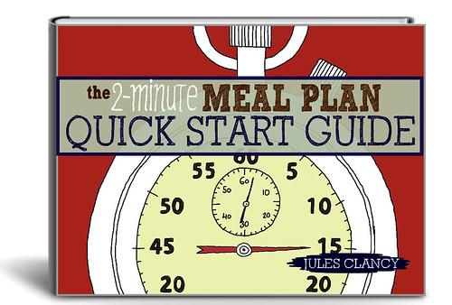 2MMP Quick Start 3D Cover