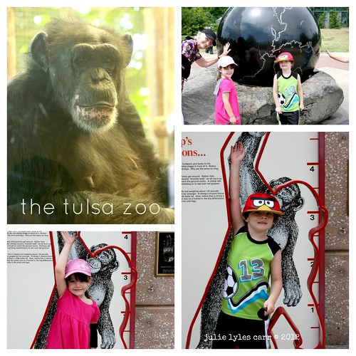 zoo collage 2 edit