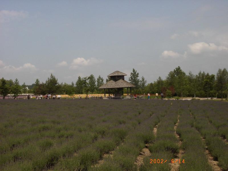 018富田農場