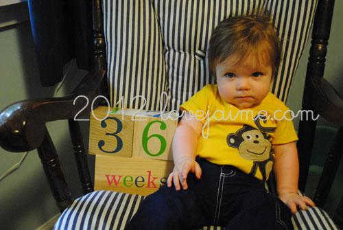 36weeks_6