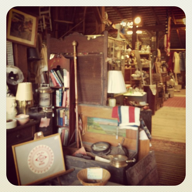Wild goose chase antiques