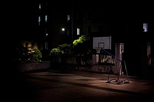 91/365(+1) by Luca Rossini