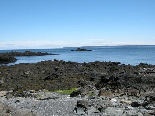 Quoddy Head State Park
