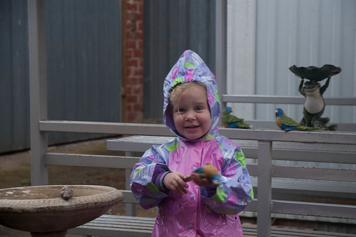 Charlotte playing in the rain
