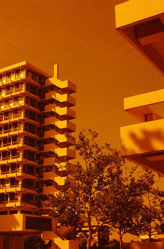 Redscale Bonn 3 by phototobi78