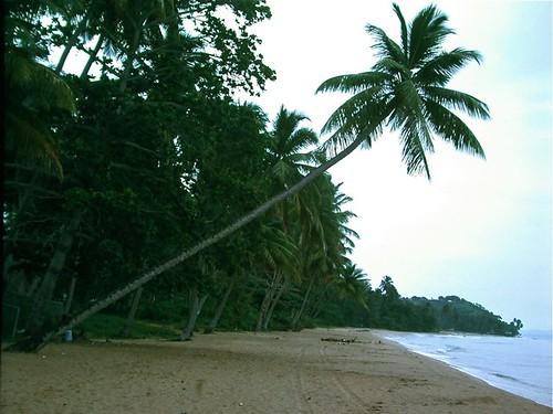 Beach along Mona Passage