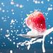 Splash by M.Tersteege