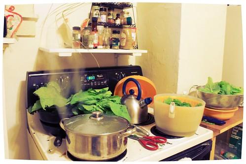 Blanching Mustard Greens